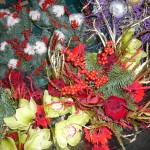 Top tips for christmas flowers