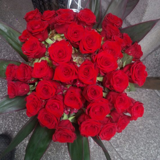 40-red-roses