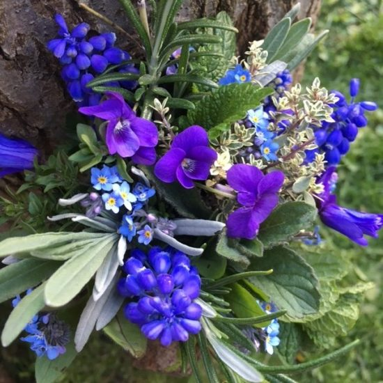 Send english spring flowers janets blog send english spring flowers mightylinksfo