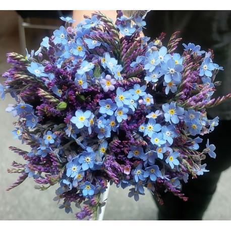 Seasonal, delicate blooms