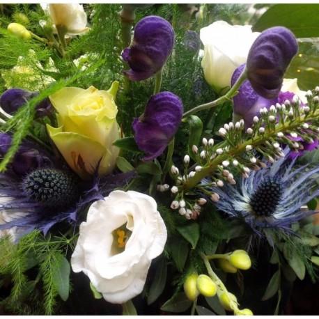 Aconitum, Thistle & Roses