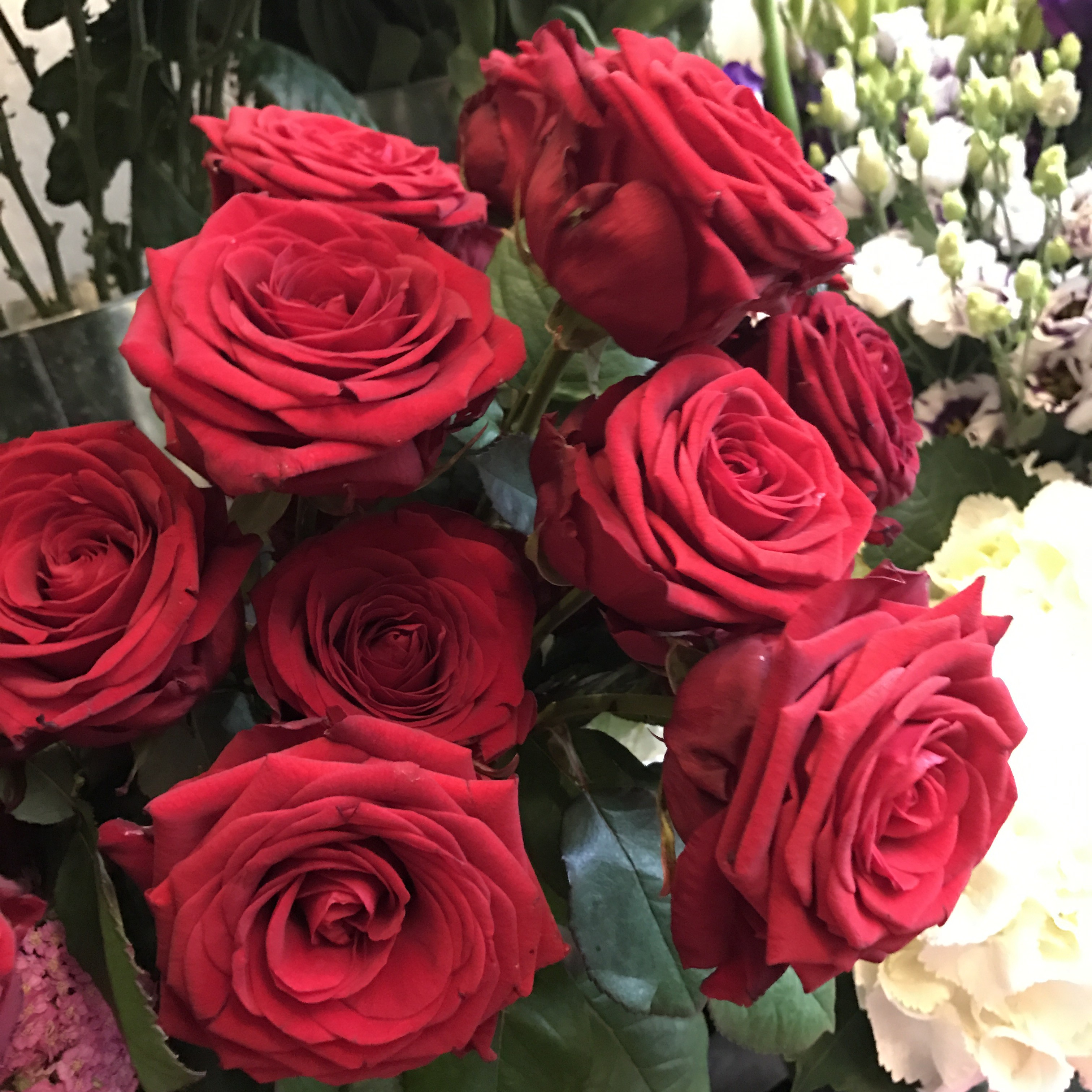 Classic Luxury Bouquets from £50 with free delivery in central ...
