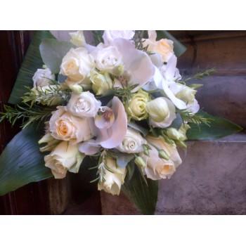 Organic Rosemary & White